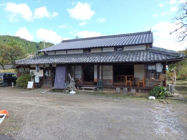小鳥の樹 熊野古道