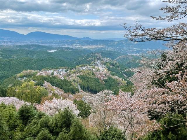 吉野山 花矢倉展望台